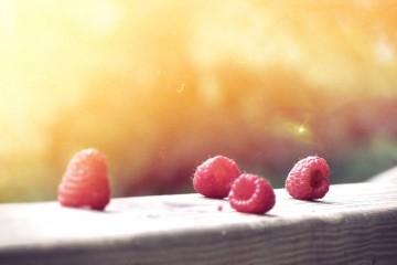 פירות קיץ מתוקים